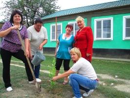 «Посади дерево»_3